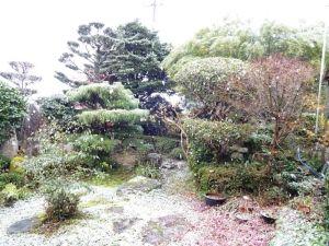我が庭この冬初めての雪