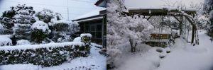 我が家の庭に今年初積雪